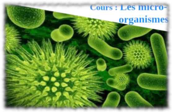 4e – micro-organismes (cours)